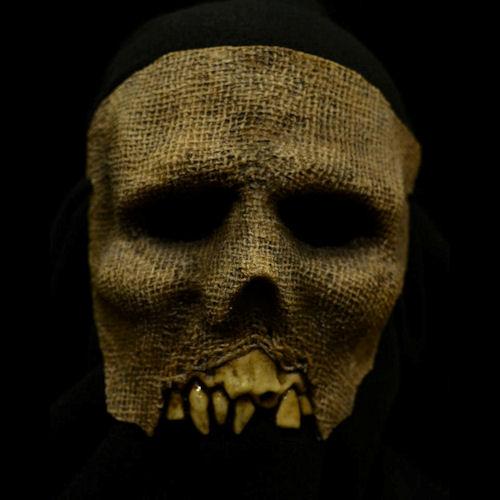 Z-Eek! Face Mask